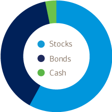 Asset allocation infographic